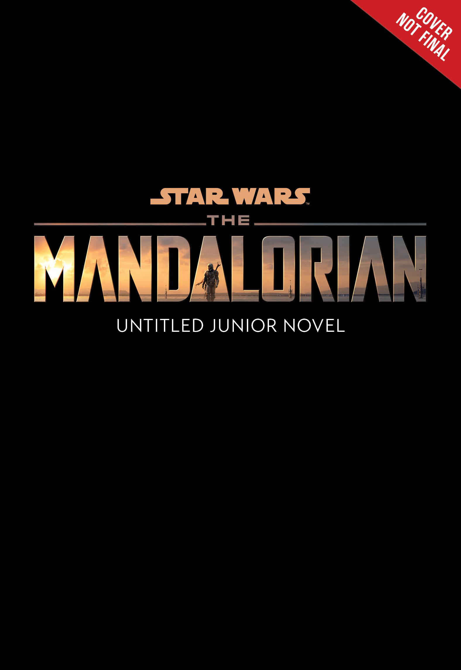 The Mandalorian Junior Novel (12.01.2021)